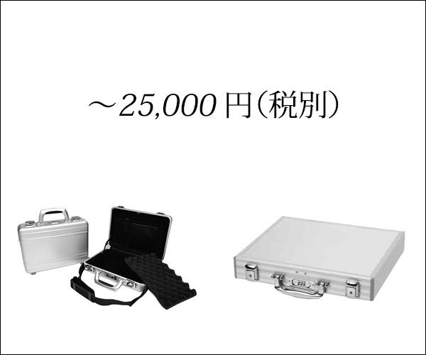 ~25,000 円(税別)
